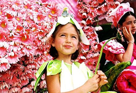 dia da flor fb vd