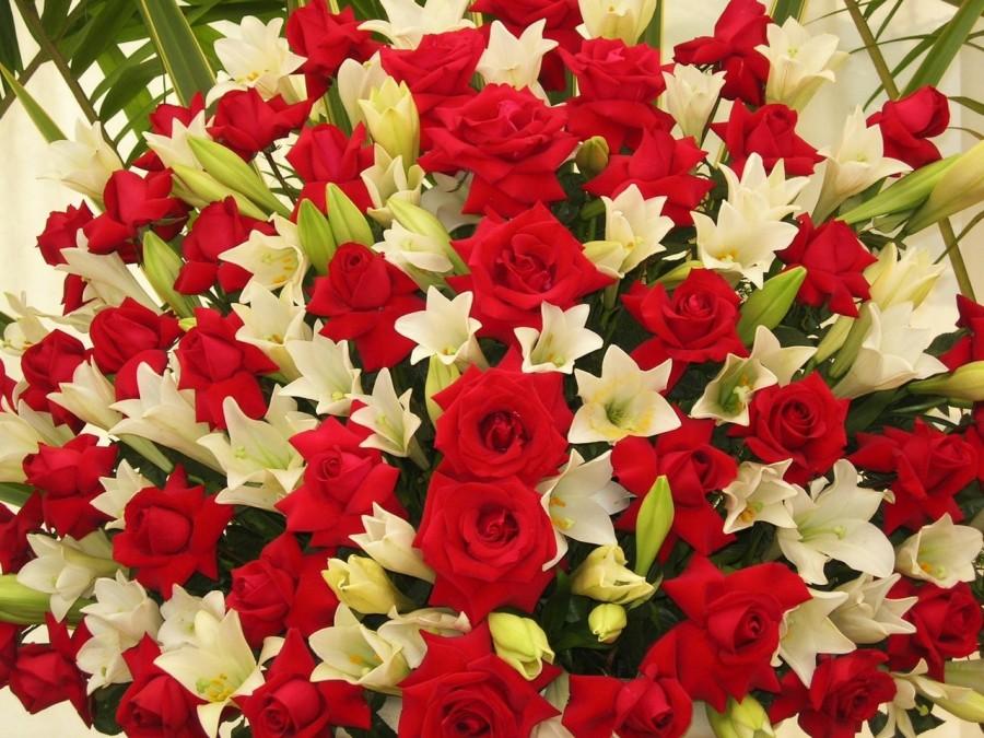O romantismo das rosas