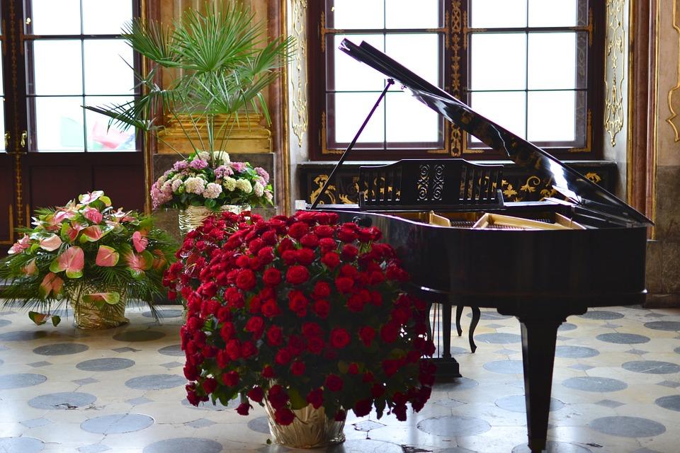 As flores na música: o som do romantismo