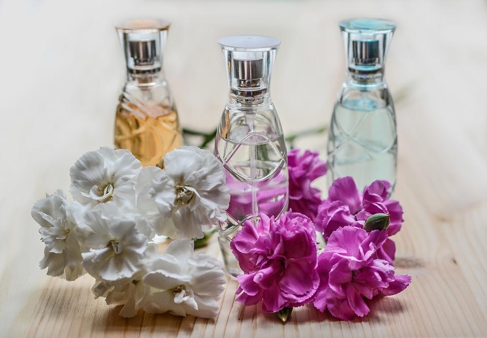 Descubra quais são as flores mais perfumadas do mundo